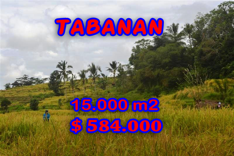 Tabanan Land for sale