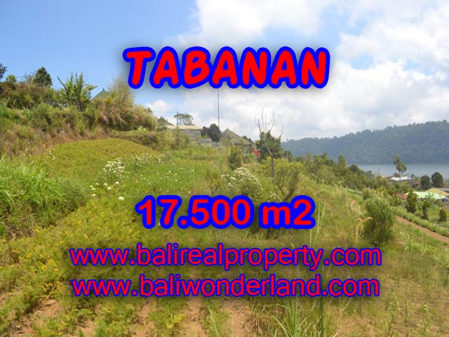Magnificent Land for sale in Tabanan Bali, Lake and mountain view in TABANAN BEDUGUL - TJTB082