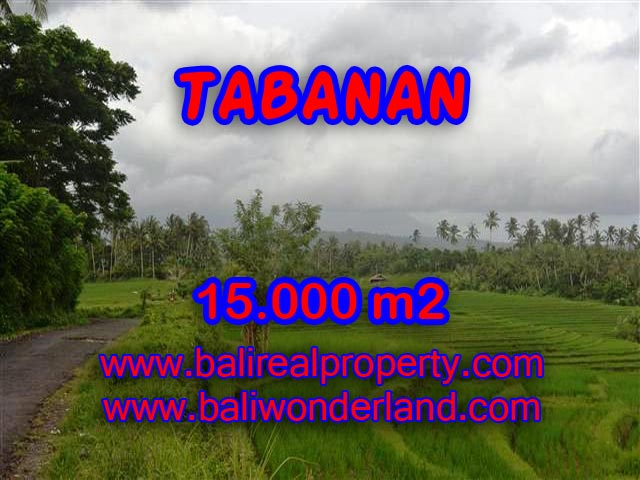 Land for sale in Bali, magnificent view Tabanan Bali – TJTB094