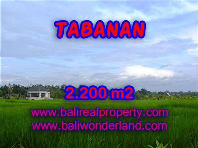 Amazing Land in Bali for sale in Tabanan kediri Bali – TJTB097