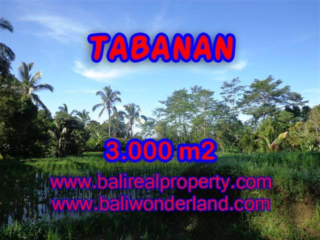 Fantastic Property for sale in Bali, land sale in Tabanan Bali – TJTB110