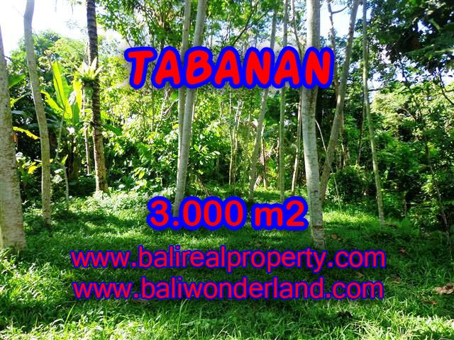 Attractive Property for sale in Bali, land for sale in Tabanan  – TJTB109