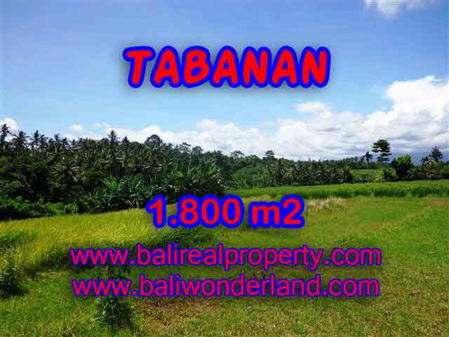 Property in Bali for sale, Astonishing land for sale in Tabanan Bali – TJTB106