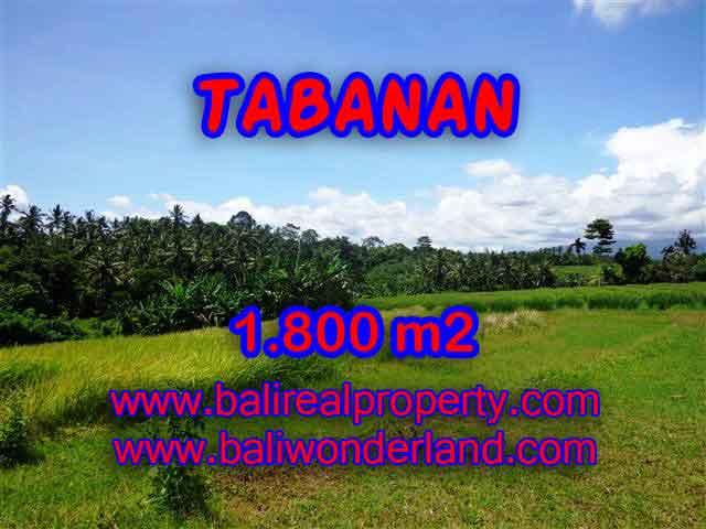 Property in Bali for sale, Astonishing land for sale in Tabanan Bali – TJTB106