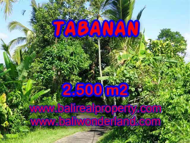 Land in Tabanan for sale, Attractive view in Tabanan Penebel Bali – TJTB122
