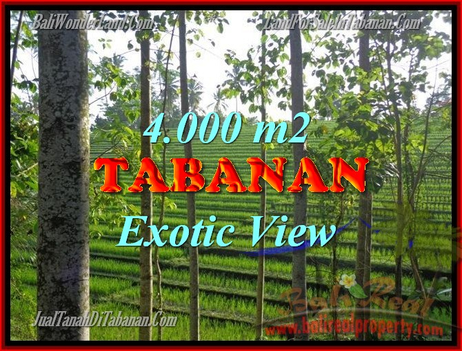 Land for sale in Bali, spectacular view in Tabanan Bali – TJTB150