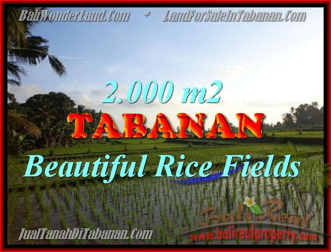 Land in Bali for sale, Stunning view in Tabanan Bali – TJTB151