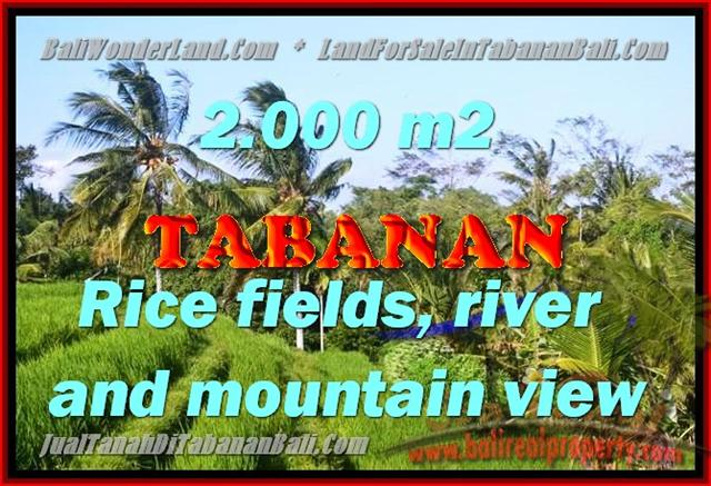 Land in Bali for sale, fantastic view in Tabanan Bali – TJTB147