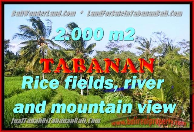 Land in Bali for sale, fantastic view in Tabanan Bali – TJTB147