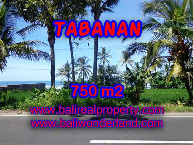Stunning Property for sale in Bali land sale in Tabanan Bali – TJTB105