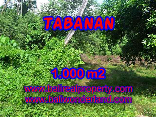 Excellent Property for sale in Bali, land for sale in Tabanan Bali  – TJTB114