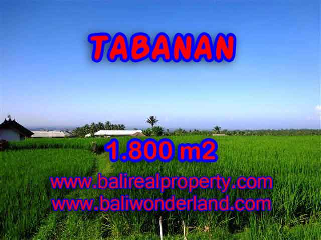 Land for sale in Tabanan Bali, Unbelievable view in Tabanan Penebel – TJTB119