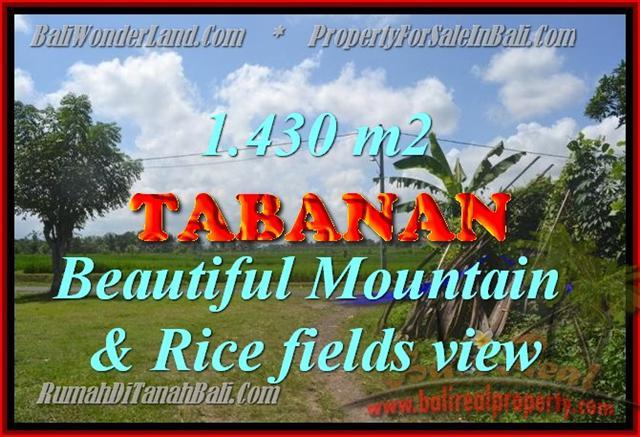 Land for sale in Bali, exotic view in Tabanan Kota ( City ) Bali – TJTB145