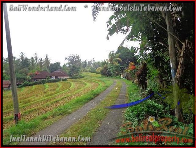 Land for sale in Bali, astonishing view in Tabanan selemadeg Bali – TJTB140