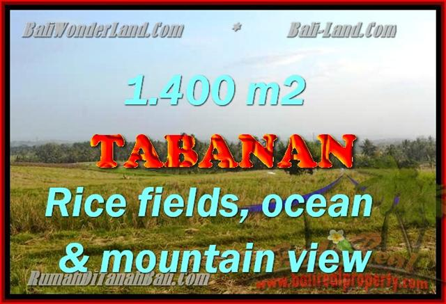 Magnificent Land for sale in Bali, Rice fields, ocean & mountain view in Tabanan selemadeg Bali – TJTB143