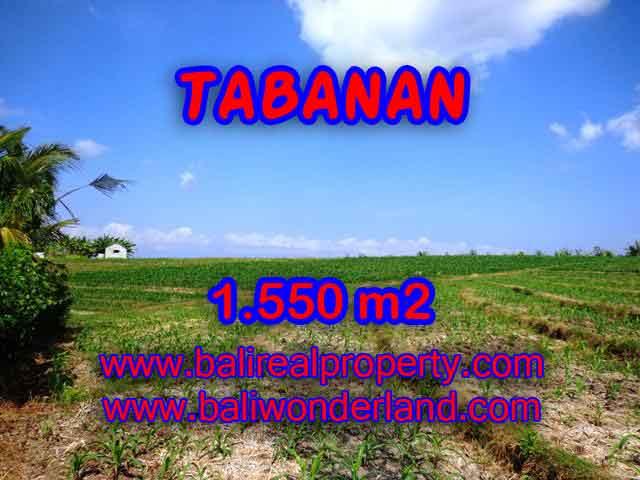 Land for sale in Tabanan Bali, Wonderful view in Tabanan selemadeg – TJTB134