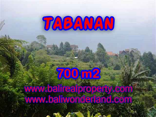 Beautiful Property for sale in Bali, LAND FOR SALE IN TABANAN Bali – TJTB103