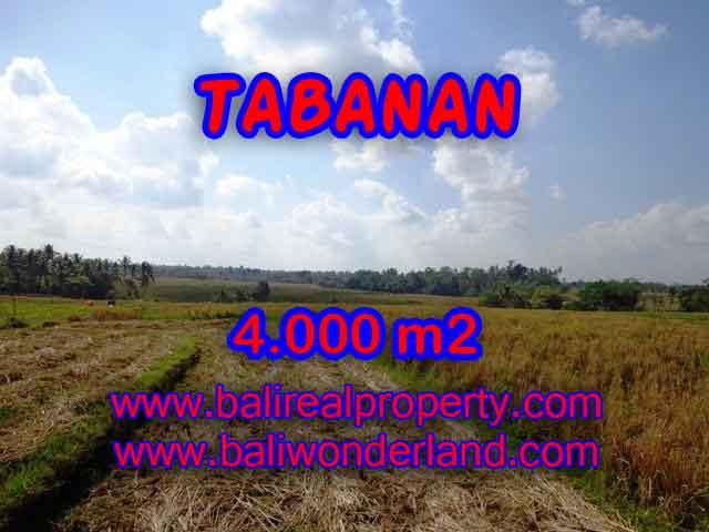 Land in Tabanan for sale, Stunning view in Tabanan selemadeg Bali – TJTB132