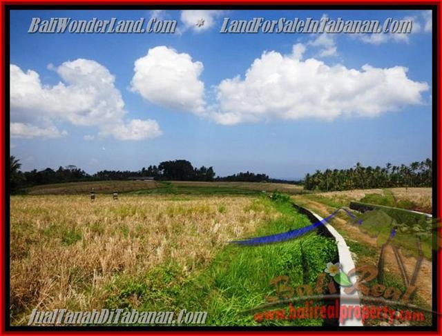 Land in Tabanan Bali for sale, Outstanding view in Tabanan selemadeg – TJTB136