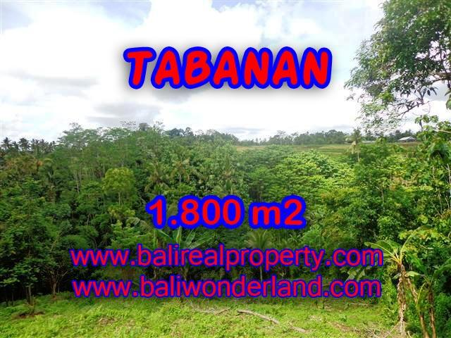Fantastic Land for sale in Bali, mountain, river and paddy view in Tabanan Penebel– TJTB088