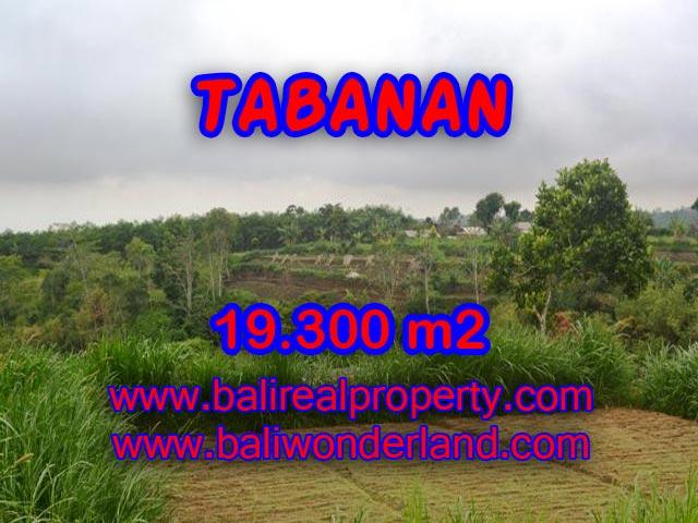 Land in Bali for sale, extraordinary view in Bedugul Tabanan – TJTB086