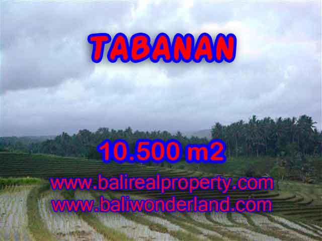 Land for sale in Bali, wonderful view in Tabanan Bali – TJTB095
