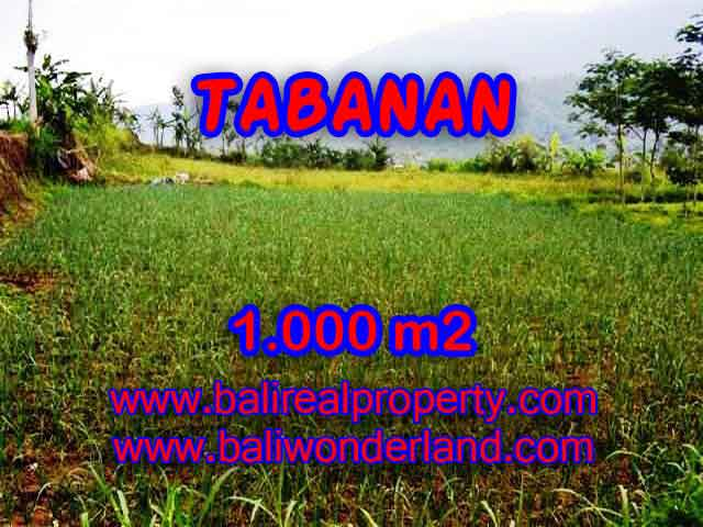 Wonderful Property in Bali for sale, land in Tabanan Bali for sale – TJTB101