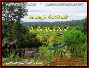 Beautiful PROPERTY LAND SALE IN TABANAN TJTB193