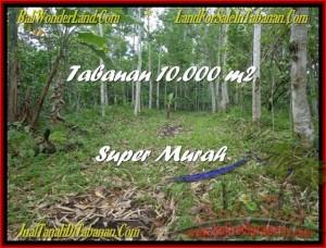Exotic LAND SALE IN Tabanan Penebel BALI TJTB177