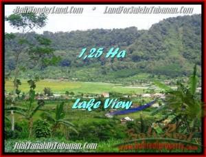 Beautiful LAND FOR SALE IN TABANAN TJTB188