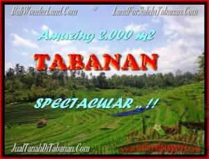 Affordable PROPERTY LAND FOR SALE IN TABANAN TJTB172