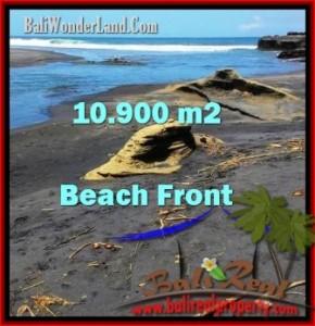 Beautiful PROPERTY LAND IN Tabanan Selemadeg FOR SALE TJTB199