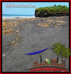 FOR SALE Affordable LAND IN TABANAN TJTB199