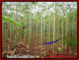 FOR SALE Exotic 3,000 m2 LAND IN TABANAN TJTB159