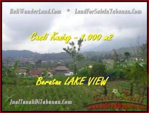Tabanan Bedugul BALI LAND FOR SALE TJTB180