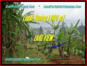 FOR SALE Affordable PROPERTY 1.000 m2 LAND IN TABANAN BALI TJTB181