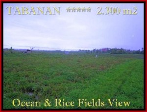 Affordable 2.300 m2 LAND FOR SALE IN TABANAN BALI TJTB184