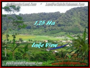 Affordable PROPERTY TABANAN LAND FOR SALE TJTB188