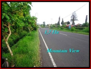Magnificent LAND FOR SALE IN TABANAN TJTB191