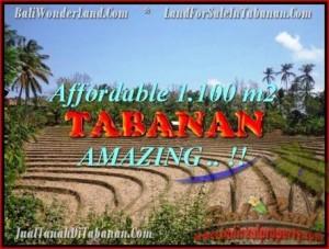 FOR SALE Beautiful PROPERTY LAND IN TABANAN TJTB170