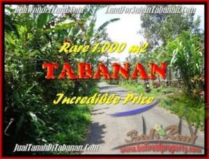 Exotic PROPERTY TABANAN LAND FOR SALE TJTB171