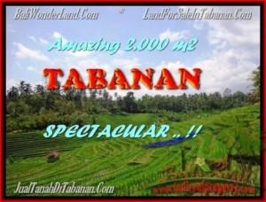 Affordable PROPERTY LAND IN TABANAN FOR SALE TJTB172