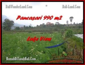 FOR SALE Exotic LAND IN Tabanan Bedugul BALI TJTB174