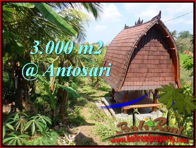 Tabanan Selemadeg 3,000 m2 LAND FOR SALE TJTB205