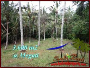 Exotic LAND IN Tabanan Selemadeg BALI FOR SALE TJTB211
