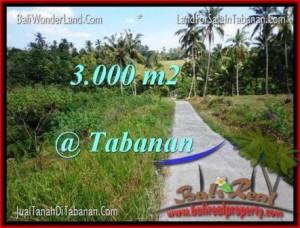 Affordable PROPERTY 3,000 m2 LAND IN TABANAN BALI FOR SALE TJTB205