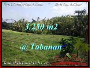 FOR SALE Beautiful PROPERTY 3,250 m2 LAND IN TABANAN BALI TJTB208