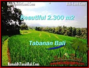 Affordable LAND FOR SALE IN Tabanan Selemadeg BALI TJTB209
