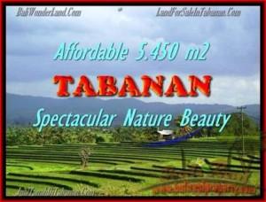 Beautiful LAND SALE IN Tabanan Selemadeg BALI TJTB152