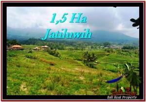 Affordable PROPERTY TABANAN BALI 15,000 m2 LAND FOR SALE TJTB225